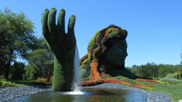 Avio karte Beograd Montreal botanicka bašta Jardin
